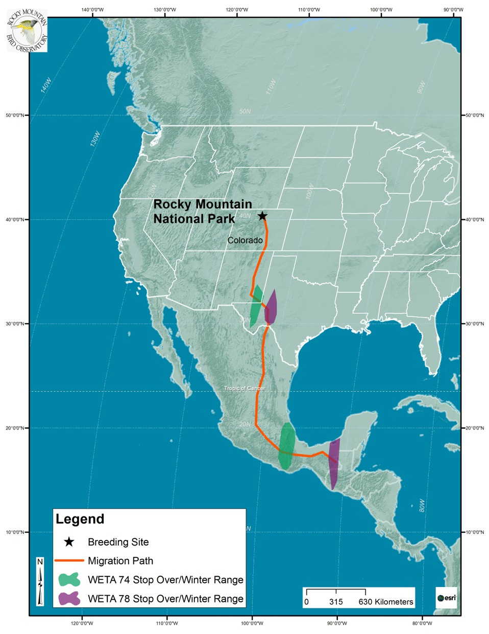 Western Tanager Migration Map