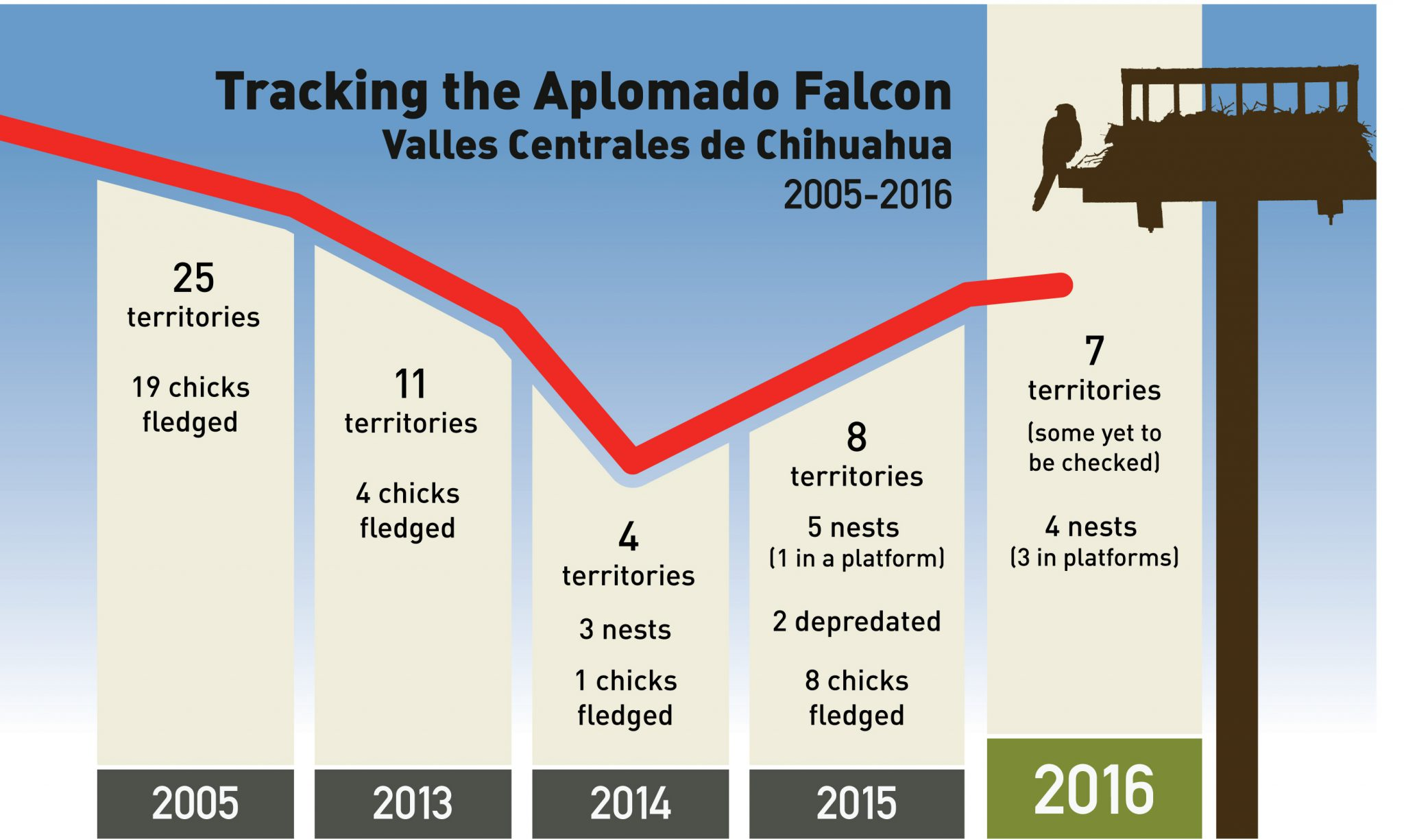 Falcon Chart