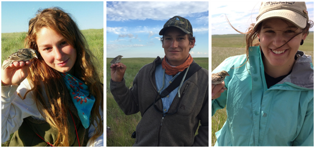 Northern Great Plains Grassland Bird Crew Leads. Pictured from left to right: Nicole Guido, Sasha Robinson, and Kelsey Bell.