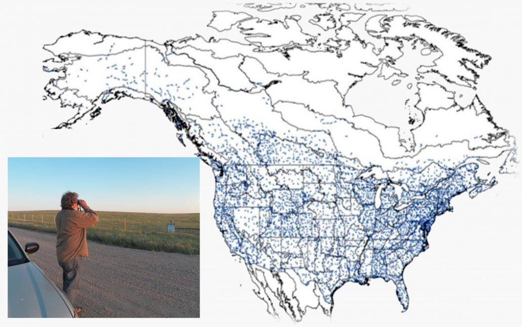 This image depicts the paths for existing BBS routes across the U.S. and Canada. The BBS has recently expanded into northern Mexico (routes not shown) and there are plans to expand the survey into central Mexico and points further south. Figure © Breeding Bird Survey